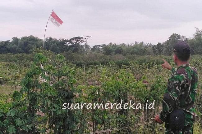 Banyuwangi Heboh, Bendera Merah Putih Bertuliskan P Joko Berkibar