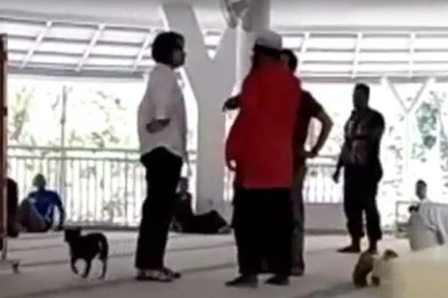 Video Viral Wanita Non Muslim Membawa Anjing Masuk Masjid