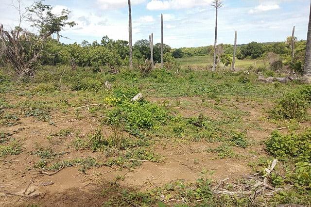Warga Bela Kepala Desa Laerung Yang Dituding Menyerobot Tanah