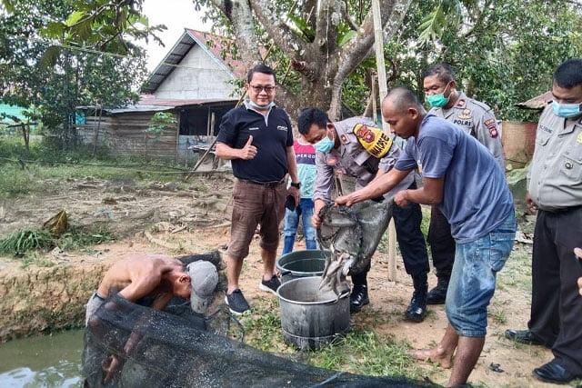 Panen Budidaya Ikan Lele Warga Binaan CV Multi Karya Mandiri dan Polres Melawi
