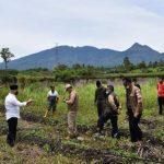 Curah Hujan Tinggi, Bupati Aceh Tengah Tinjau Lokasi Terdampak Bencana